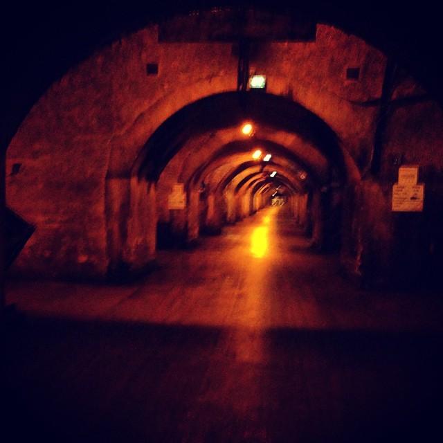 Mercer Cellars