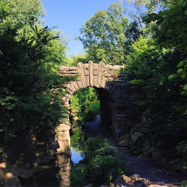 Hidden little Bridge in Central Park