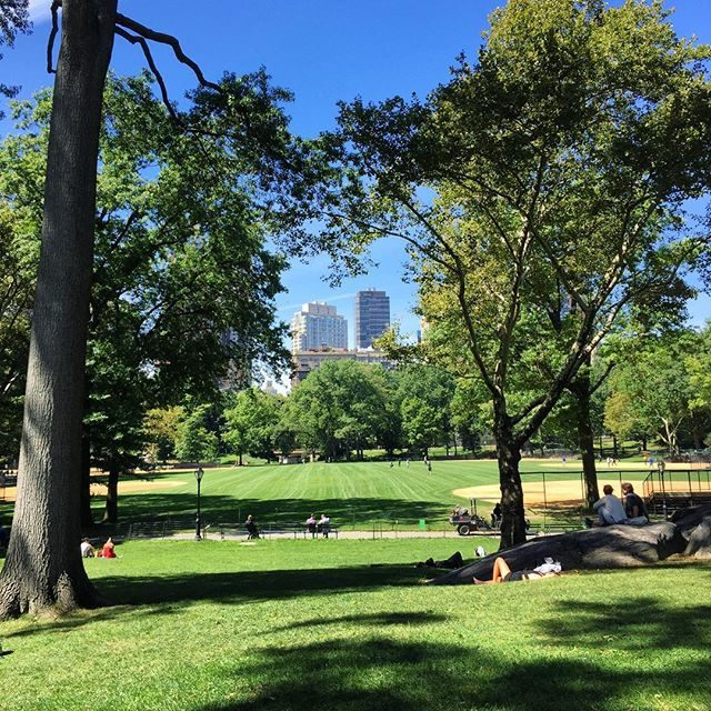 Sports fields in Central Park
